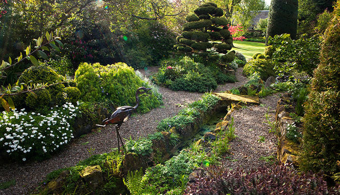A tranquil space in the Redcroft garden