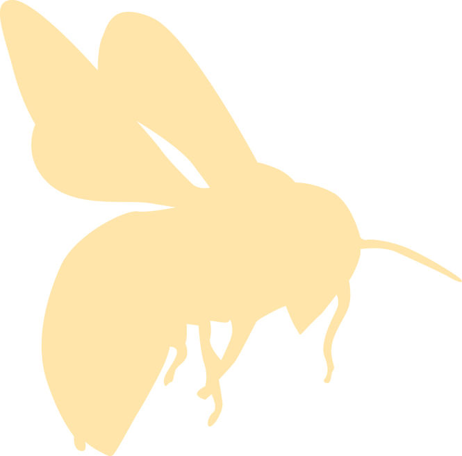 bee-flying-light.jpg