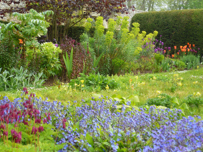 12 gardens open for the Fife Spring Trail 2018