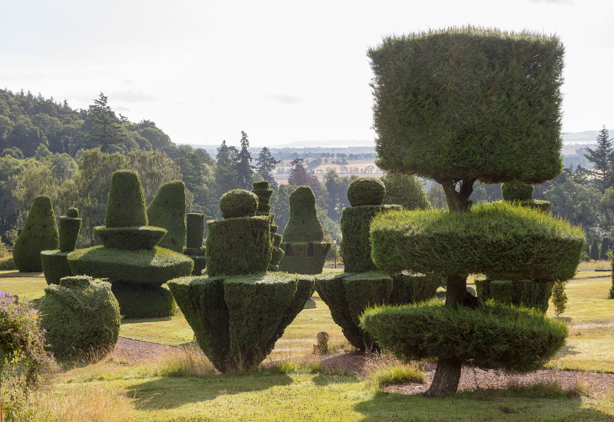 Topiary Fingask Castle
