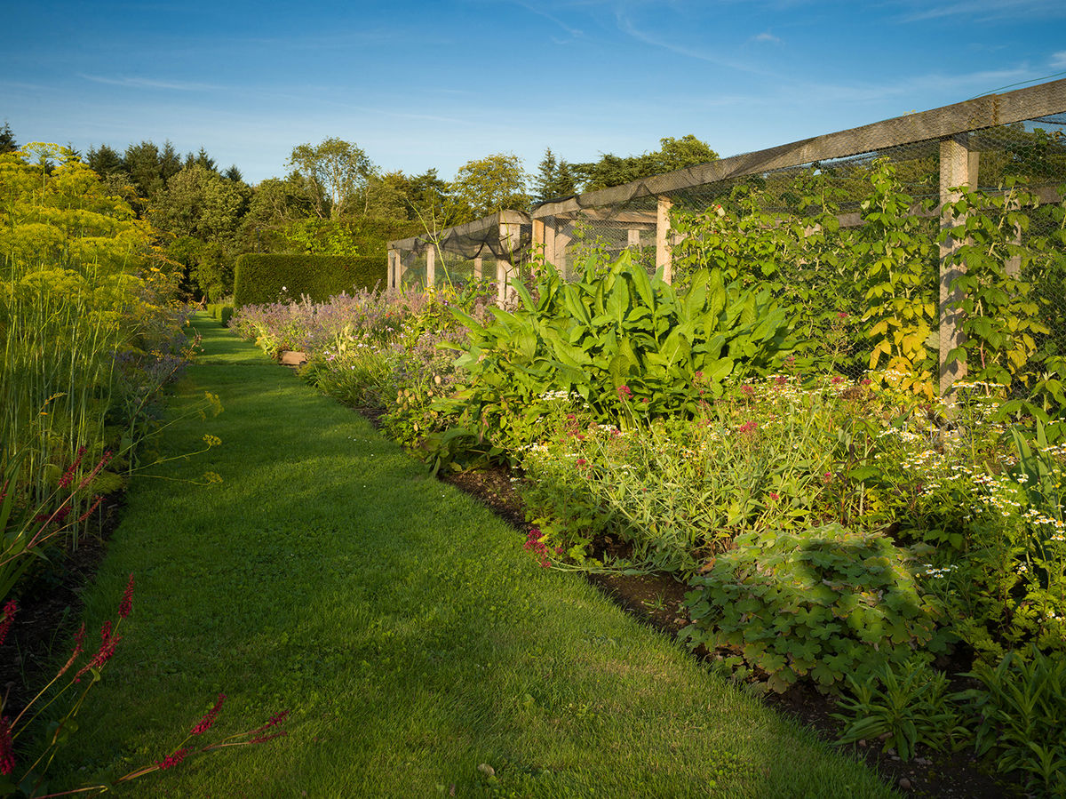 The Herbalist's Garden at Logie