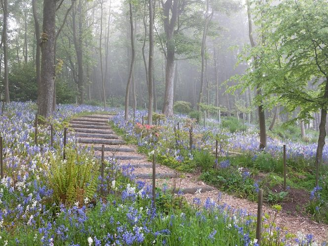 Fife Spring Garden Trail 2019 Tickets