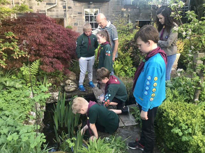 Gardens and Health Week 2019