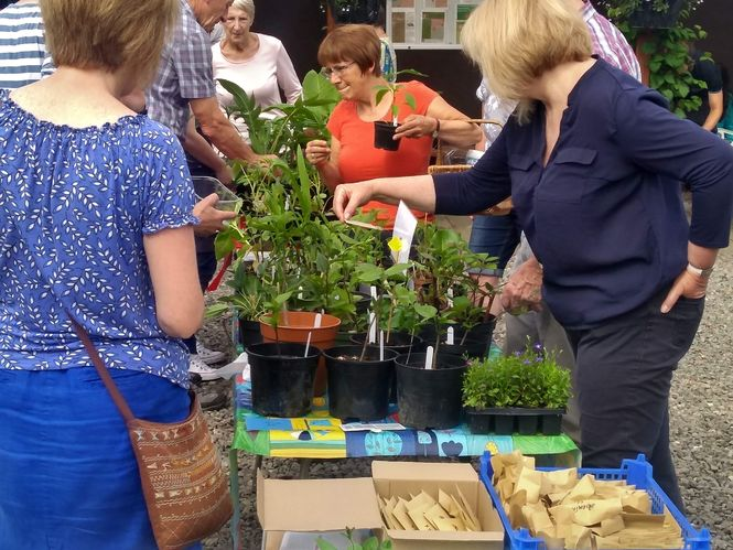 Plant Passports and Plant Sales