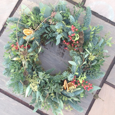 Plants for your Christmas wreath