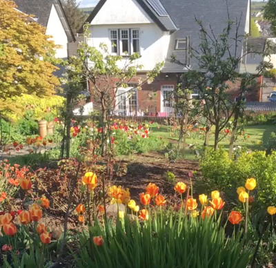 Garden on Larbert Road Virtual Tour
