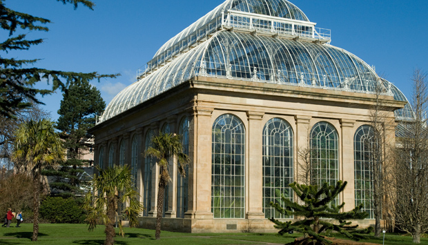 The Glasshouses at the Royal Botanic Garden Edinburgh