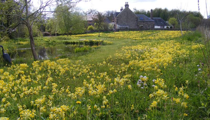 The Steading at Clunie